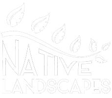 Native Landscapes